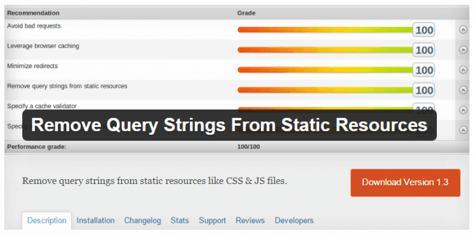 Remove query string from static resources wordpress plugin